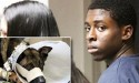 This Teen Has Just Been Sentenced to 23 Years in Jail For Killing a Dog — A Police Dog!