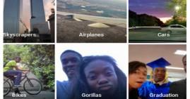 Google Photos Labels Black People as Gorillas