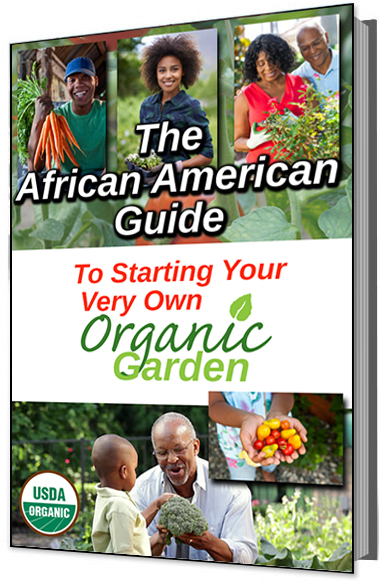 how to grow your own organic garden