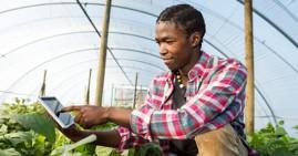 Entrepreneur doing business in Africa