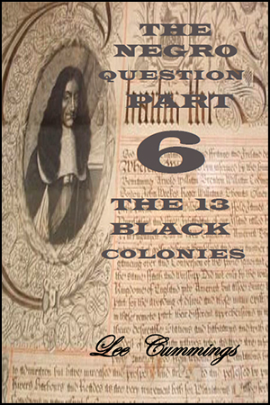The Negro Question Part 6 By Lee Cummings