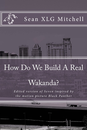 How Do We Build a Real Wakanda